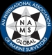 The National Association of Marine Surveyors, Inc.